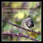 2017 NaPoWriMo1